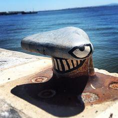 Requin, Lisbonne
