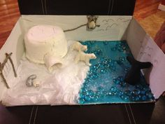 Artic diorama -marbles for water