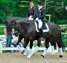 Special horses Prestige and Totilas. The two best Dressage horses in the world!'
