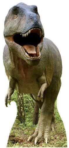T-Rex Cardboard Cutout - Ideas for Dinosaur themed birthday party. Dinosaur decorations, dinosaur party tableware, dinosaur party games, dinosaur party bags, dinosaur fancy dress and dinosaur toys Dinosaur Fancy Dress, Dinosaur Party, Life Size Cardboard Cutouts, Glinda The Good Witch, Elf Movie, Young T, Marvin The Martian, World Images, Tyrannosaurus Rex