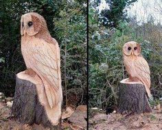 Amazing owl carved in wood !