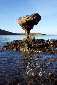Playa Balandra, cerca de #LaPaz, Baja California Sur, #Mexico