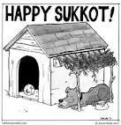 #59: Happy Sukkot