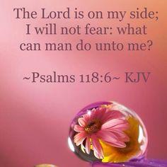 ~Psalms 118:6~ KJV
