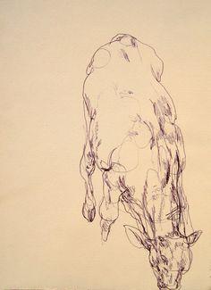 """""""A cow in my italian sketchbook"""" by Gregory Muenzen"""