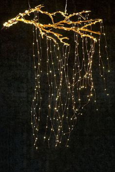 christmas lights Stargazer Cascade Falls Lights, 7 Plug-In Diy Christmas Lights, Decorating With Christmas Lights, Outdoor Christmas, Christmas Home, Christmas Wedding, Holiday Lights, Christmas Design, Christmas Ornaments, Holiday Decor