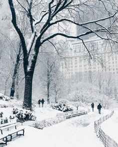 Central Park covered by snow & New York, United States. Photo by Tag someone you love & The post Central Park covered by snow New York, & appeared first on . Winter Szenen, Winter Magic, Winter Time, Winter Christmas, Winter Storm, Prim Christmas, Central Park, Belle Photo Instagram, Disney Instagram