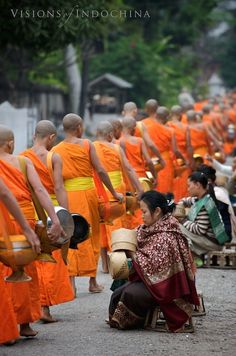 Monks receiving morning alms in Luang Prabang, Laos Laos Travel, Asia Travel, Vietnam, Dalai Lama, Laos Culture, Buddha, Colani, Vientiane, Buddhist Monk