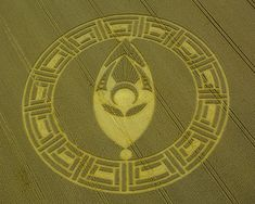 Crop Circle at Cooks Plantation, nr Beckhampton, Wiltshire, United Kingdom. Reported 23rd August 2013