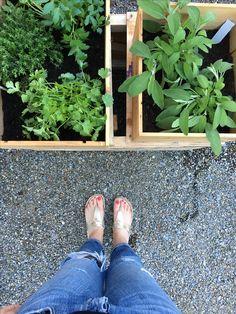 Urban Gardening . Home . Zürich .