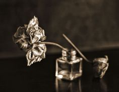 Melancholic Rose In Sepia by Paola Marinangeli on Art Limited