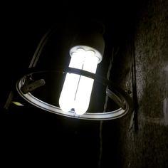 """Light """" dte"""""""