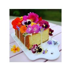 Edible Flowers | 5 Flowers You Can Eat! ❤ liked on Polyvore featuring home and home decor