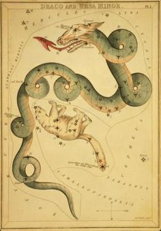 The constellations Draco the Dragon and Ursa Minor the Little Bear. Image credit: Old Book Art Image Gallery