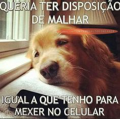 #preguiça #malhar #fitness #celular #dog #musculaçao #fashion #moda #lookfashion #primeimportados #humor