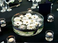 Black & White Theme | Adelaide's Wedding Decoration Specialist