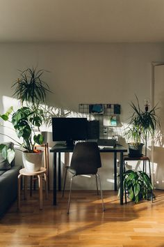 UO HOME: URBAN GARDENS WITH @HAARKON   Urban Outfitters Blog Uo Home, Bachelorette Pad, Humble Abode, Decoration, Room Inspiration, Home Office, Building A House, New Homes, Interior Design