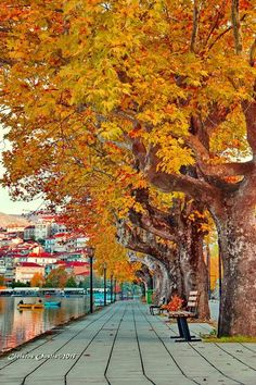 Autumn Aesthetic, Cool Plants, Westerns, San, Vacation, Places, Painting, Travel, Macedonia Greece