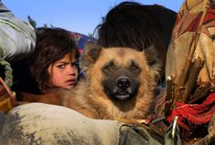 via throughthethickandthin:  A young girl and her dog look out from a vehicle as she and her family wait for security clearance at a checkpoint on the outskirt of Bannu, a town on edge of the Pakistani tribal region of Waziristan