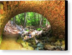 While walking the private property in Acadia National Park, we came upon our favorite bridge. This bridge is massive and it has so many stones putting it together. In the archway  there are so many cobblestones tucked in so tight. It is just amazing. The bridges in Acadia National Park were build and funded by John D. Rockefeller, Jr., between 1913 and 1940. They connect the carriage roads which were designed for bikers, hikers and equestrian riders. We see many horses along the private…
