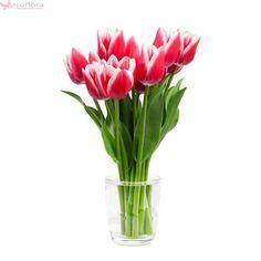 Light Red Grace - Buchet de 9 lalele rosii Tulips, Glass Vase, Bouquet, Plants, How To Make, Decor, Decoration, Bouquet Of Flowers, Bouquets