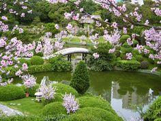 JardineriaChina1