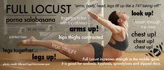 Full locust pose improves elasticity of the rib cage