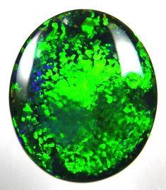 Black Opal and Boulder Opal Specialis - Gemstory