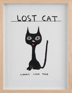 David Shrigley, Untitled (lost cat) 2011