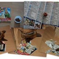Leckerchen in Zeitschrift suchen, von Manuela