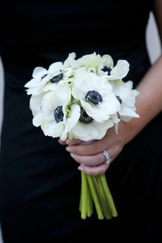 Small bouquet of white anemones