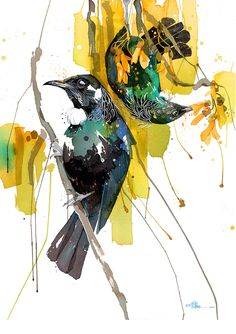 Official Rachel Walker Page. New Zealand watercolour, spray paint, pen and ink artist creating splashy celebrations of native and rare animals. Watercolor And Ink, Watercolor Paintings, Watercolours, Watercolor Trees, Watercolor Portraits, Watercolor Landscape, Abstract Paintings, Bird Illustration, Illustrations