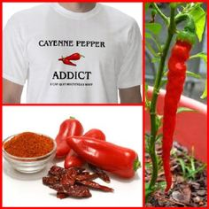 CAYENNE - Cayenne pepper has wonderful cardiovascular benefits, including lowering blood pressure. Famed herbalist Doctor John Christopher noted that a couple of teaspoons of cayenne pepper never failed to stop a heart attack in only minutes. When added to food, cayenne increases appetite, improves digestion and relieves gas, nausea and indigestion. It also thins phlegm and eases its passage from the lungs.