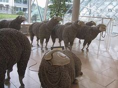 Sheep in Frankfurt museum--looking forward to finding them again