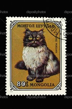 Cat stamp with coloring like Smokey used to have...