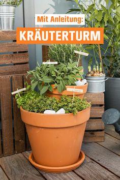 Diy Herb Garden, Backyard Vegetable Gardens, Outdoor Gardens, Home And Garden, Balcony Plants, Balcony Garden, Garden Plants, Indoor Farming, Garden Deco