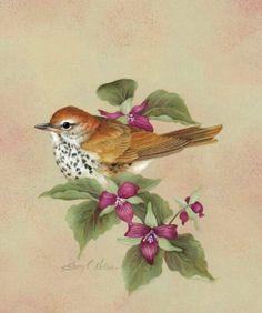 bird on flower branch.