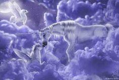 images of unicorns and pegasus Fantasy Unicorn, Unicorn And Fairies, Unicorn Horse, Unicorns And Mermaids, Unicorn Art, Magical Unicorn, Baby Unicorn, White Unicorn, Unicorn Images