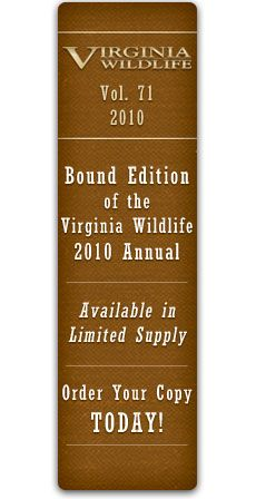 For Christmas he got me a subscription to Virginia Wildlife magazine. Yes, really.
