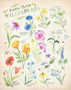 Wissen diese Wildblumen drucken | Katie Daisy Kunst | Aquarell Blumen | Wand Kunst | 8 x 10 | 11 x 14