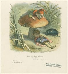"""Richard Doyle 1875 """"In Fairy-Land, a series of pictures from elf-land"""""""