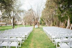 our orchard ceremony spot (pine tree rows is on the right)