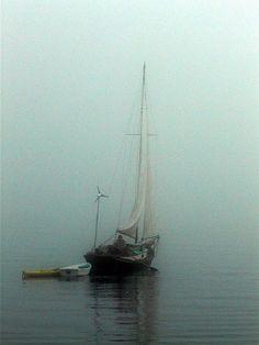 roldam:  (via zeil weg in de mist …)