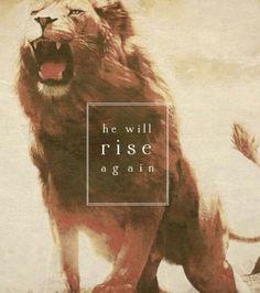 Aslan from Narnia! Jesus Christus, Lion Of Judah, Chronicles Of Narnia, Cs Lewis, King Of Kings, Christian Quotes, Gods Love, Bible Verses, Scriptures