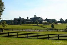 Dream Stable and Pastures.