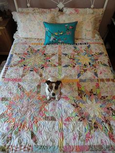 amy butler star   blue mountain girl   starlight express from jelly roll quilts by pam lintott