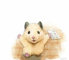 Japanese Hamster, Hamster Life, Baby Animal Drawings, Pretty Drawings, Cute Hamsters, Super Cute Animals, Baby Puppies, Cute Illustration, Exotic Pets