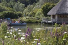 Arundel Wetland Centre.  WWT Arundel is a 65-acre haven for wildlife in a picture-book setting in West Sussex, bordered by the River Arun and overlooked by Arundel Castle.  Distance from Shaftesbury to Arundel is 88 miles.