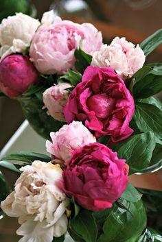 http://homegrown-chic.blogspot.com/
