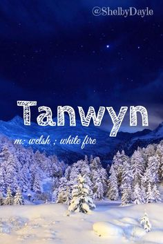 Tanwyn unique baby name! Pronounced: Tan- Win - Unique Baby Name - Ideas of Unique Baby Name - Tanwyn unique baby name! Baby Girl Names Unique, Names Girl, Unique Names, Kid Names, Name Inspiration, Writing Inspiration, Welsh Names, Unisex Name, Book Names